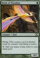 10th Edition Foil: Birds of Paradise