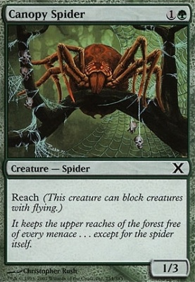 10th Edition: Canopy Spider