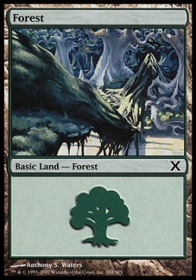 10th Edition: Forest (380 A)