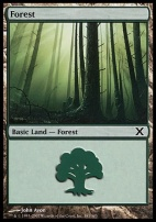 10th Edition: Forest (381 B)