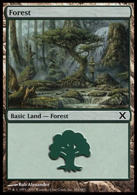 10th Edition Foil: Forest (382 C)