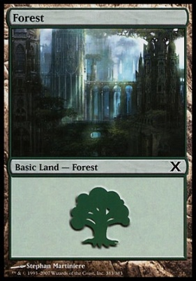 10th Edition: Forest (383 D)