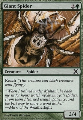 10th Edition: Giant Spider