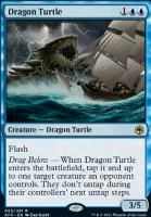 Adventures in the Forgotten Realms: Dragon Turtle