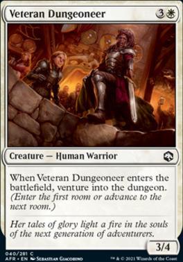 Adventures in the Forgotten Realms: Veteran Dungeoneer
