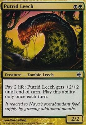 Alara Reborn Foil: Putrid Leech