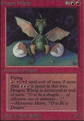 Alpha: Dragon Whelp