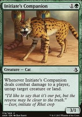 Amonkhet: Initiate's Companion