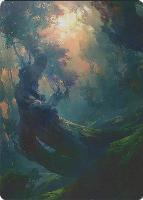 Art Series - Zendikar Rising: Forest Art Card (Tianhua X - Not Tournament Legal)