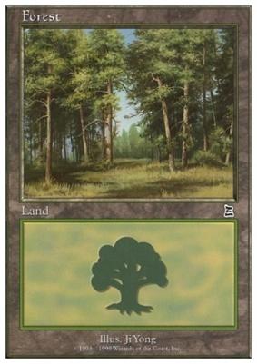 Battle Royale: Forest (D)
