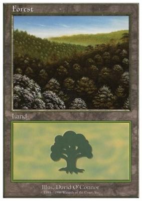 Battle Royale: Forest (F)