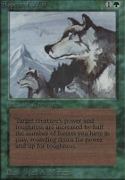 Beta: Aspect of Wolf