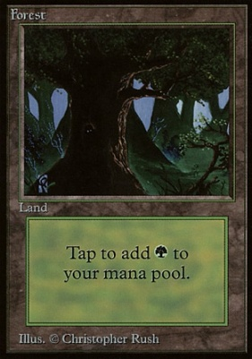 Beta: Forest (C)