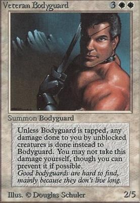 Beta: Veteran Bodyguard