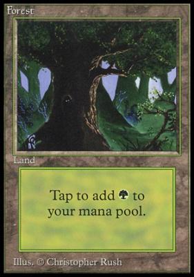 Collectors Ed Intl: Forest (C - Not Tournament Legal)