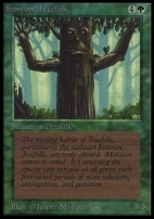 Collectors Ed Intl: Ironroot Treefolk (Not Tournament Legal)