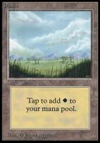 Collectors Ed Intl: Plains (A - Not Tournament Legal)