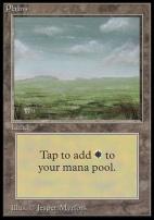 Collectors Ed Intl: Plains (C - Not Tournament Legal)