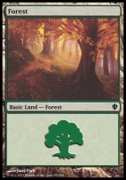 Commander 2013: Forest (355 C)