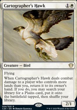 Commander 2020: Cartographer's Hawk