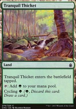 Commander Anthology: Tranquil Thicket