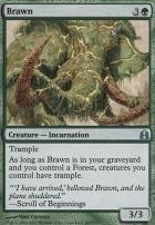Commander: Brawn