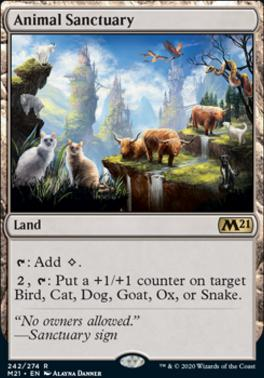 Core Set 2021: Animal Sanctuary