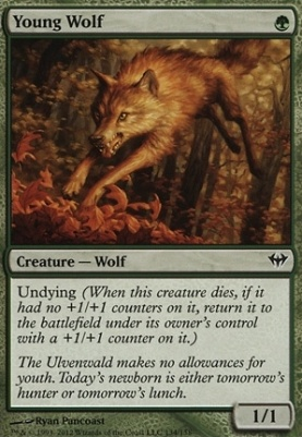 Dark Ascension: Young Wolf