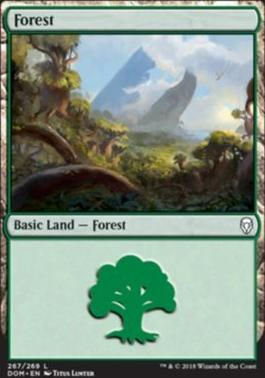 Dominaria Foil: Forest (267 B)