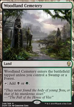 Dominaria: Woodland Cemetery