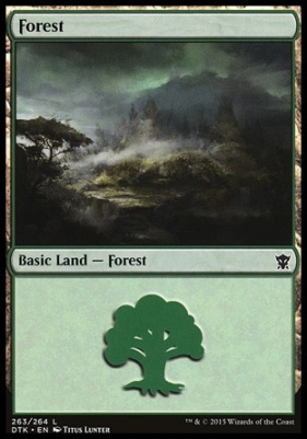Dragons of Tarkir: Forest (263 B)