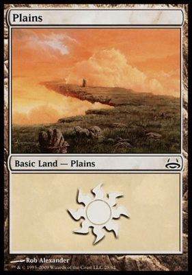 Duel Decks: Divine Vs. Demonic: Plains (28 C)