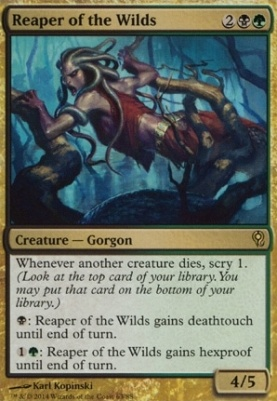 Duel Decks: Jace Vs. Vraska: Reaper of the Wilds