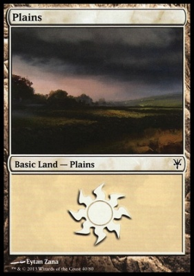 Duel Decks: Sorin Vs. Tibalt: Plains (40 C)