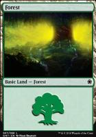 Game Night: Forest (67 A)