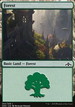 Guilds of Ravnica: Forest