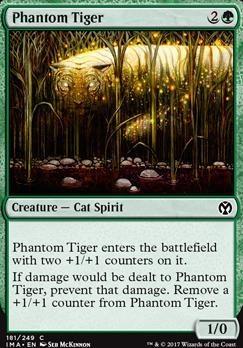 Iconic Masters: Phantom Tiger