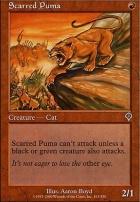 Invasion: Scarred Puma