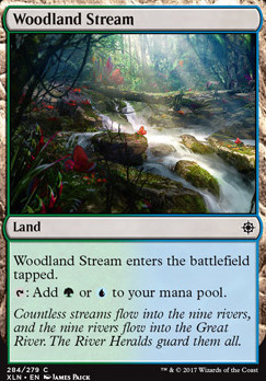 Ixalan: Woodland Stream (Planeswalker Deck)