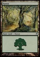 Lorwyn: Forest (298 A)