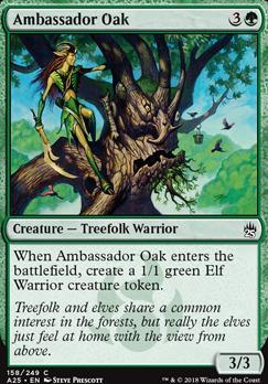 Masters 25: Ambassador Oak