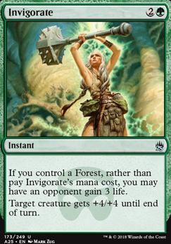 Masters 25: Invigorate