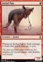 Masters 25 Foil: Jackal Pup