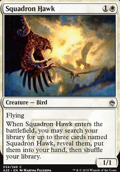 Masters 25 Foil: Squadron Hawk
