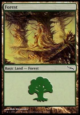 NM Ravnica MTG Forest #304 Foil