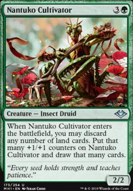 Modern Horizons: Nantuko Cultivator
