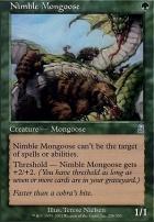 Odyssey: Nimble Mongoose
