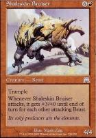 Onslaught: Shaleskin Bruiser