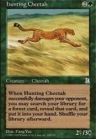 Portal 3K: Hunting Cheetah