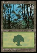 Portal II: Forest (B)